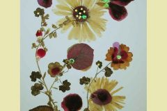 Dried-Flowers2