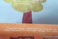 Tree-flap